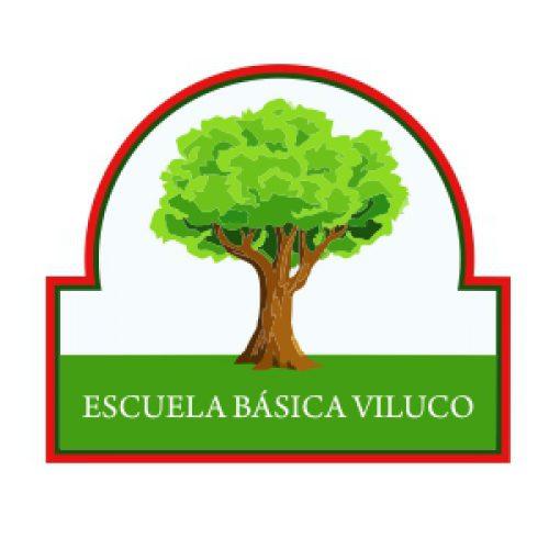 Insignia Escuela Basica Viluco