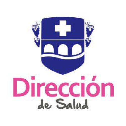 Logo Direccion de Salud Buin