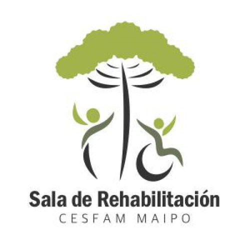 Logo RBC Maipo